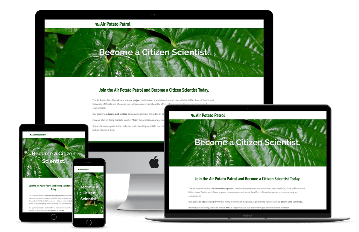 Air Potato Patrol — Hernando County & Gainesville, FL Website Design