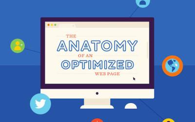 anatomy-optimized-web-page-infographic
