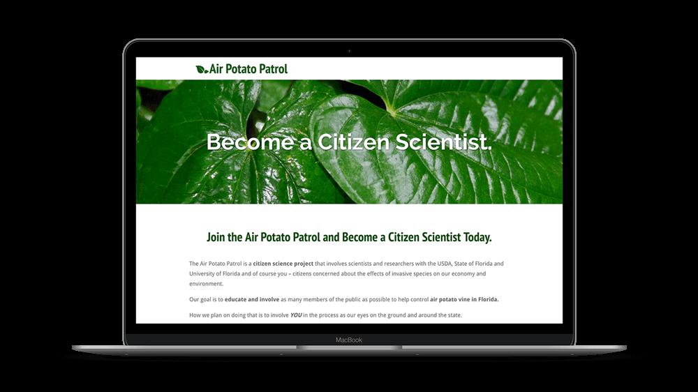Air-Potato-Beetle-Website-Design-Main-Image