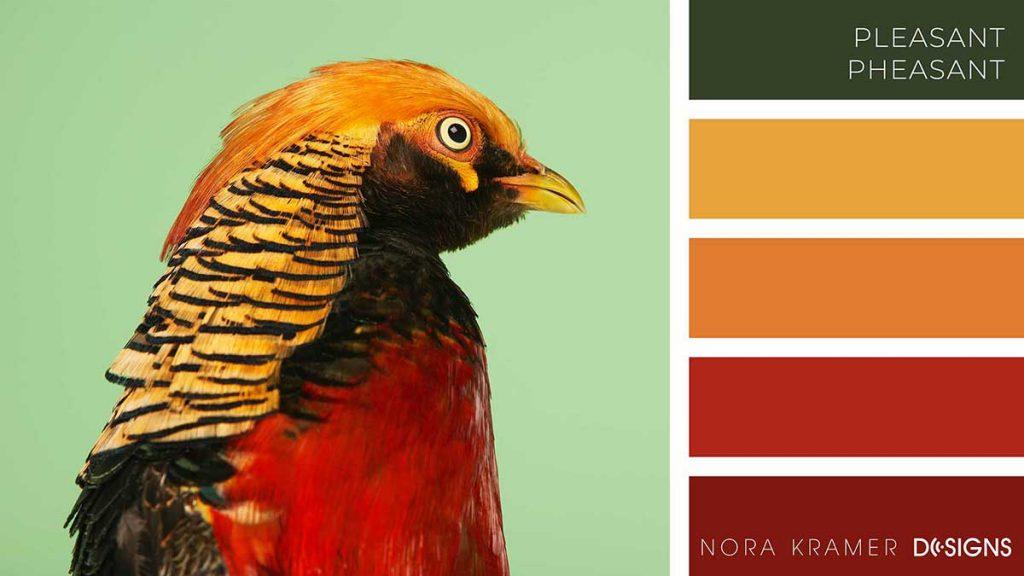 Pleasant Pheasant Color Palette